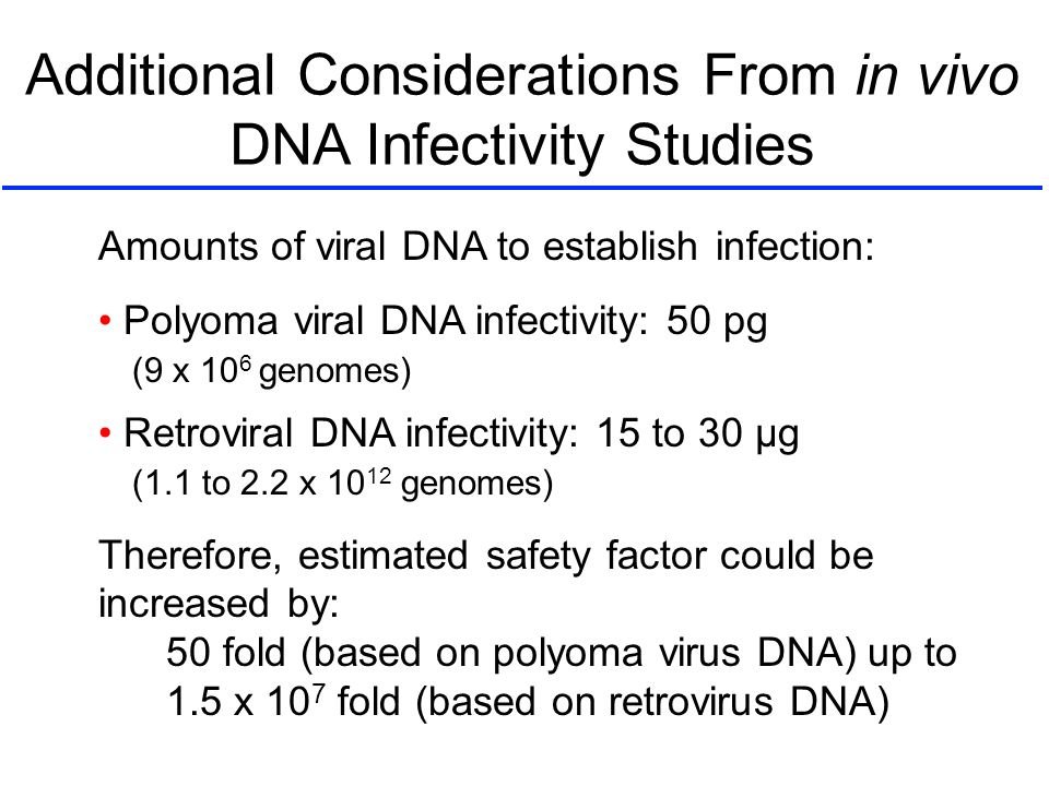 Additional Considerations From in vivo DNA Infectivity Studies