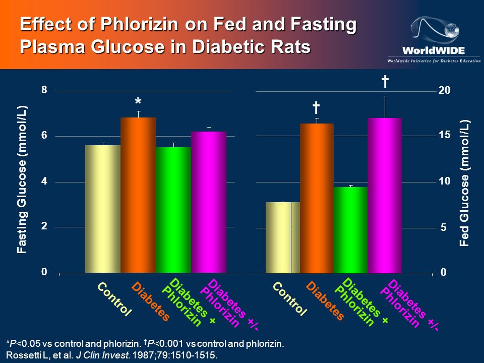 Effect of Phlorizin on Fed and Fasting Plasma Glucose in Diabetic Rats