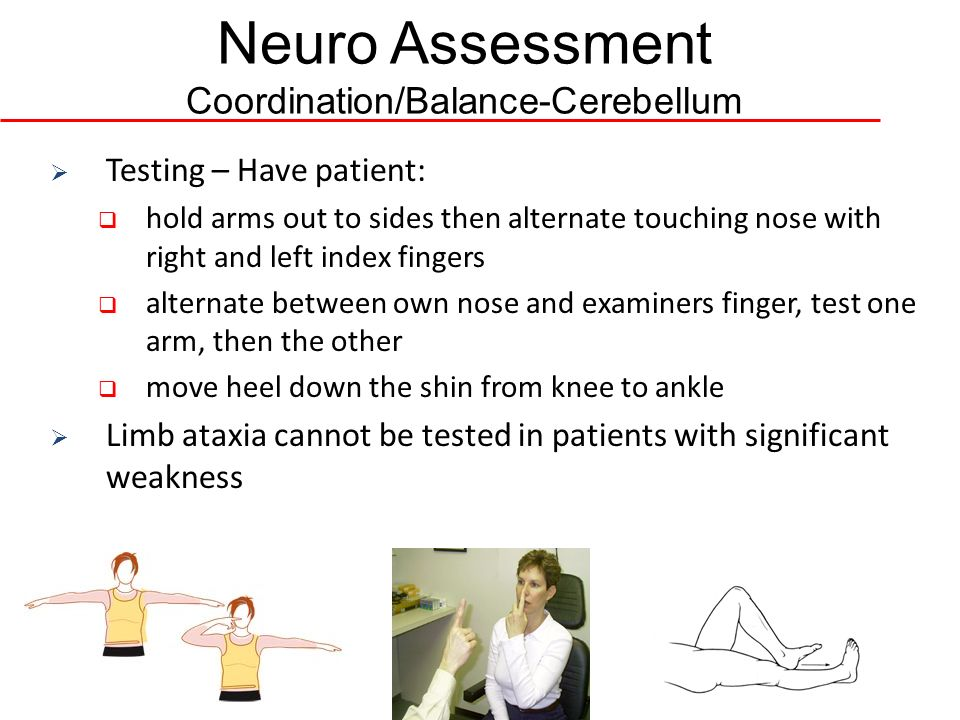 neuro assessment - Emayti australianuniversities co