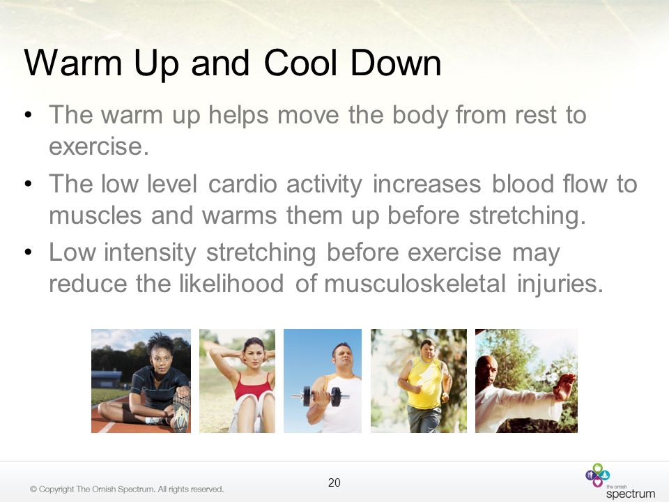 Warm Up and Cool Down The warm up helps move the body from rest to exercise.