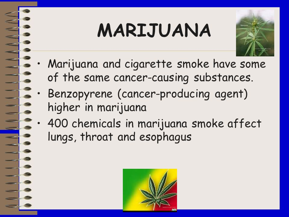 MARIJUANA Marijuana and cigarette smoke have some of the same cancer-causing substances. Benzopyrene (cancer-producing agent) higher in marijuana.