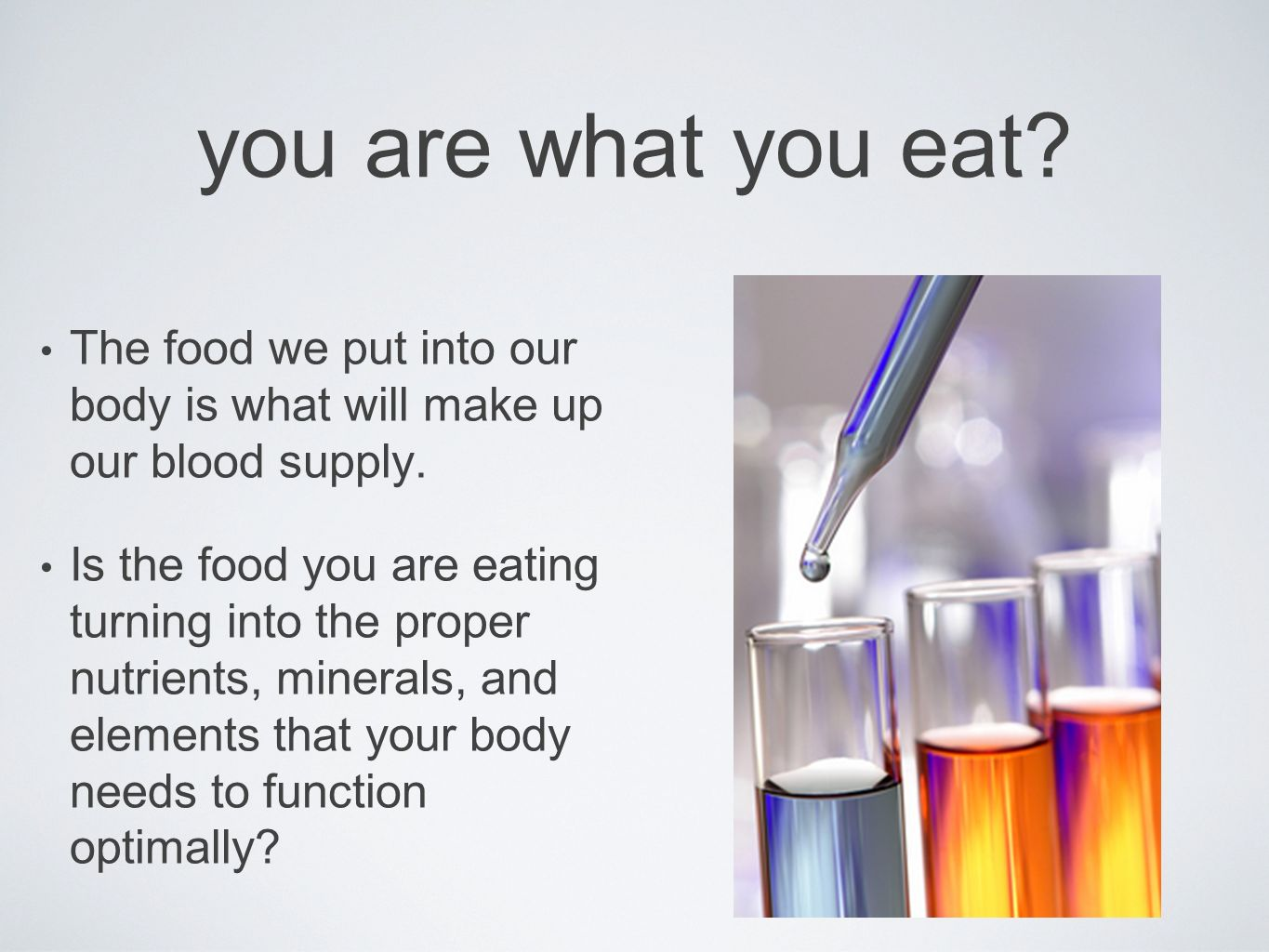 you are what you eat The food we put into our body is what will make up our blood supply.