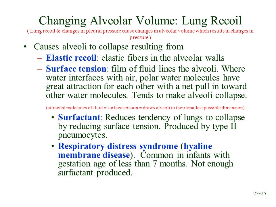 Changing Alveolar Volume: Lung Recoil ( Lung recoil & changes in pleural pressure cause changes in alveolar volume which results in changes in pressure )