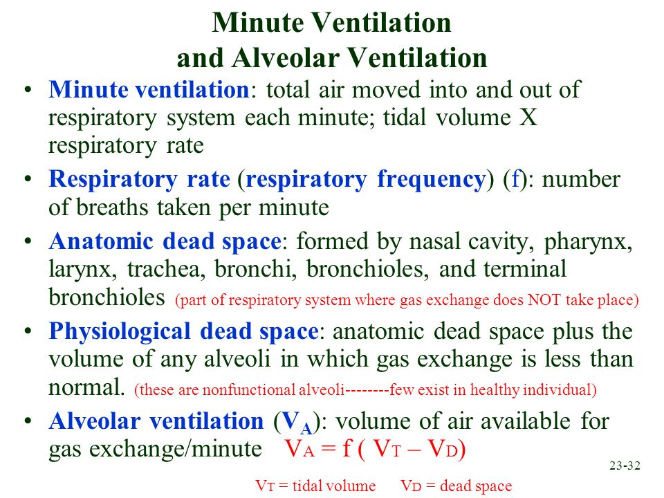 Minute Ventilation and Alveolar Ventilation