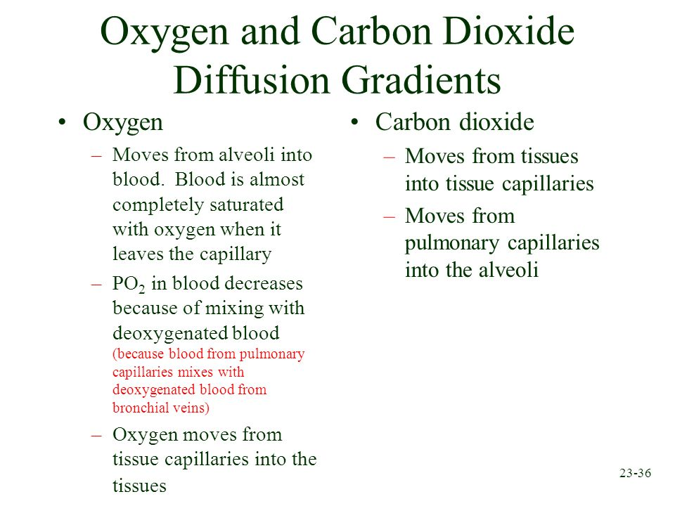 Oxygen and Carbon Dioxide Diffusion Gradients