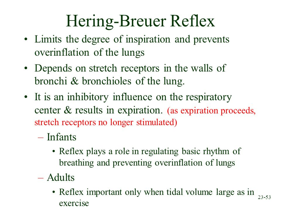 Hering-Breuer Reflex Limits the degree of inspiration and prevents overinflation of the lungs.