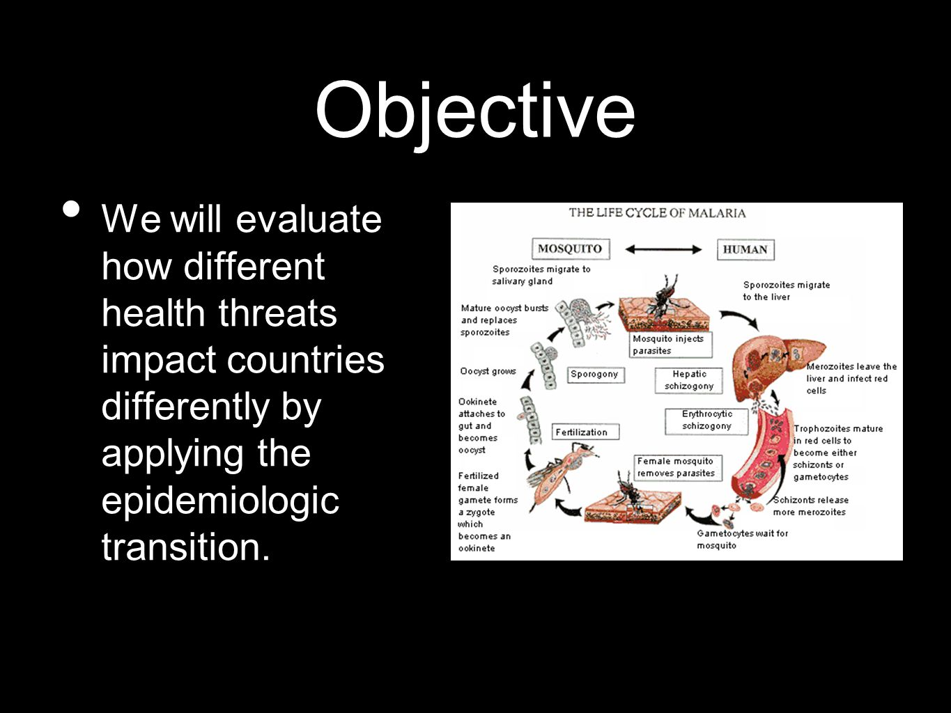 Objective We will evaluate how different health threats impact countries differently by applying the epidemiologic transition.