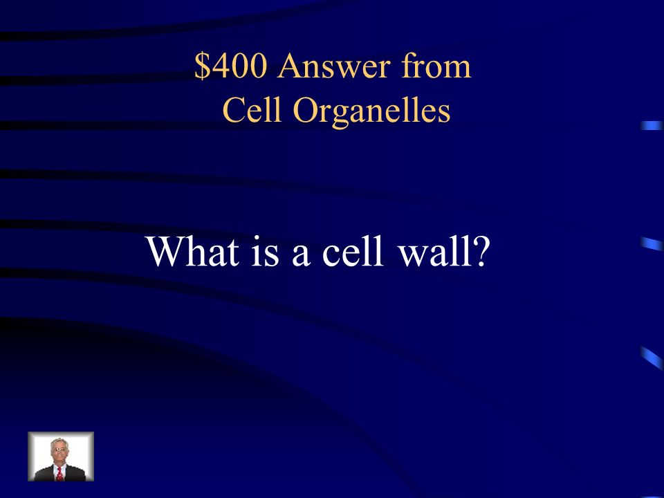 $400 Answer from Cell Organelles