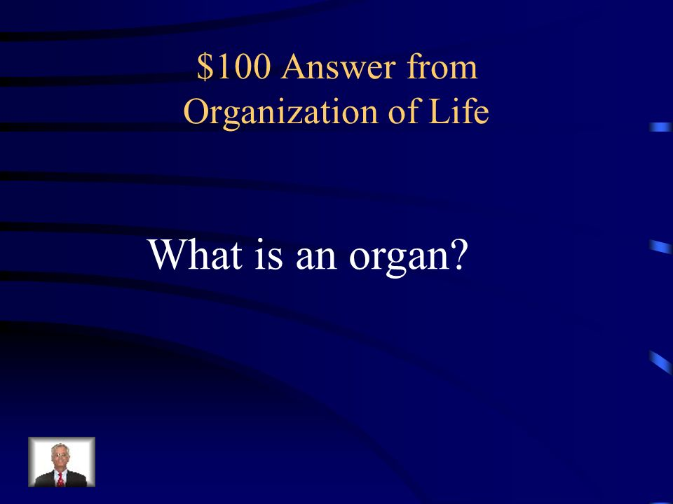 $100 Answer from Organization of Life