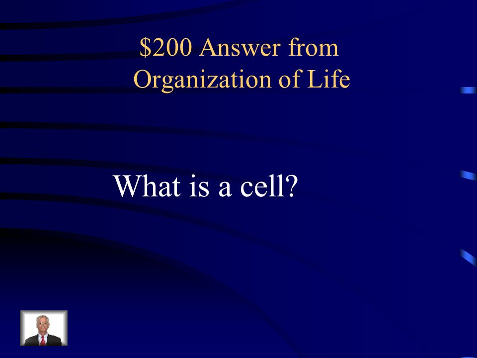 $200 Answer from Organization of Life