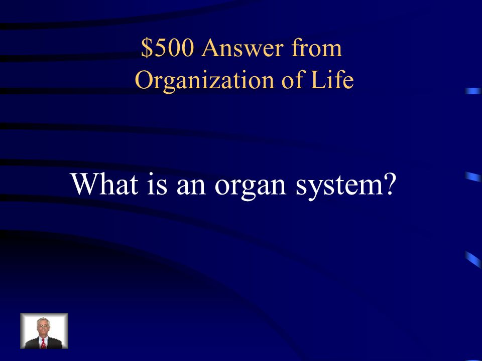 $500 Answer from Organization of Life
