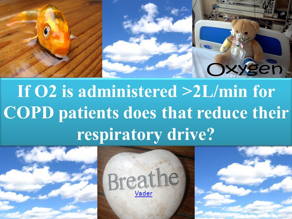 If O2 is administered >2L/min for COPD patients does that reduce their respiratory drive