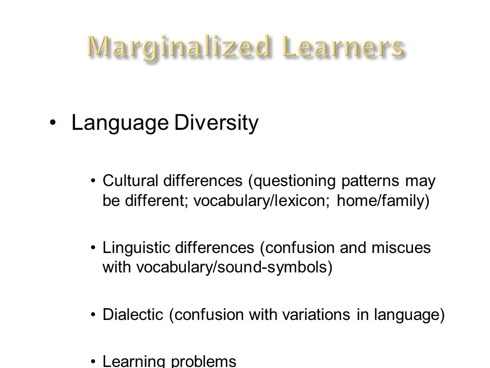 Language Diversity Cultural differences (questioning patterns may be different; vocabulary/lexicon; home/family)