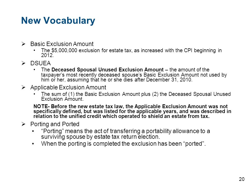 New Vocabulary Basic Exclusion Amount DSUEA