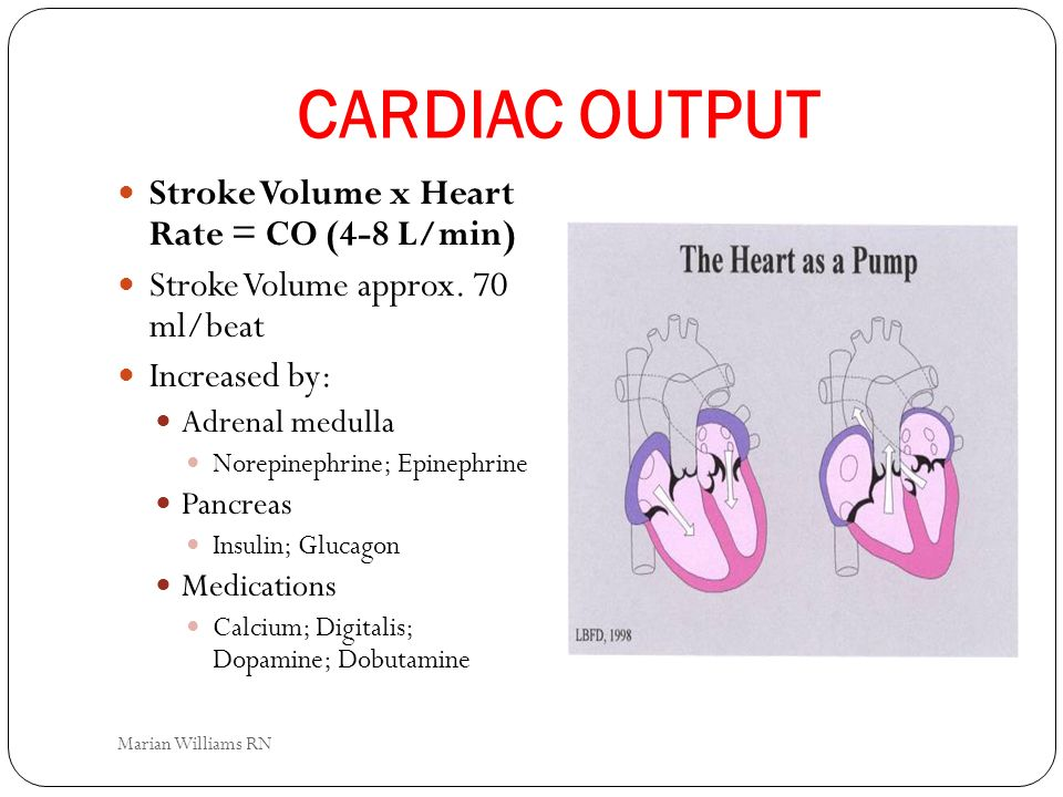 CARDIAC OUTPUT Stroke Volume x Heart Rate = CO (4-8 L/min)
