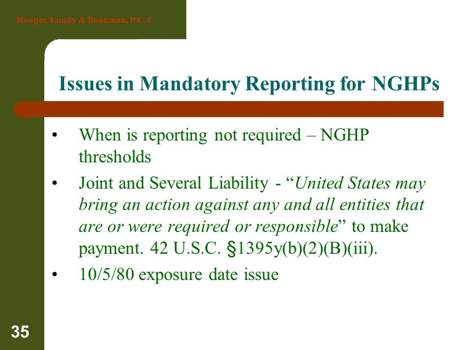 Issues in Mandatory Reporting for NGHPs