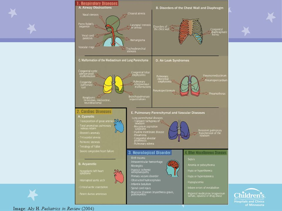 Image: Aly H. Pediatrics in Review (2004)
