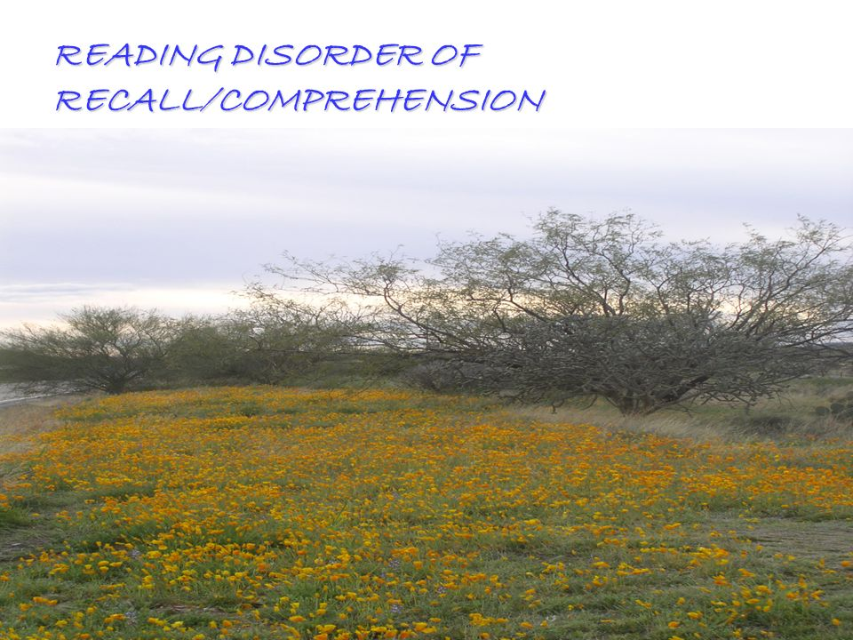 READING DISORDER OF RECALL/COMPREHENSION