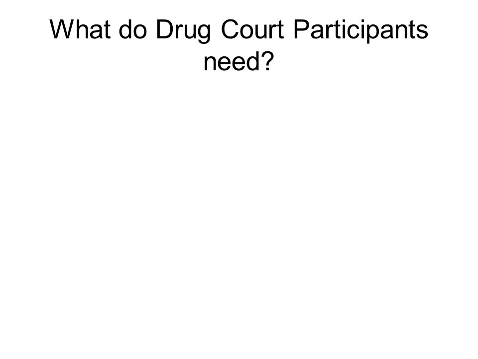 What do Drug Court Participants need
