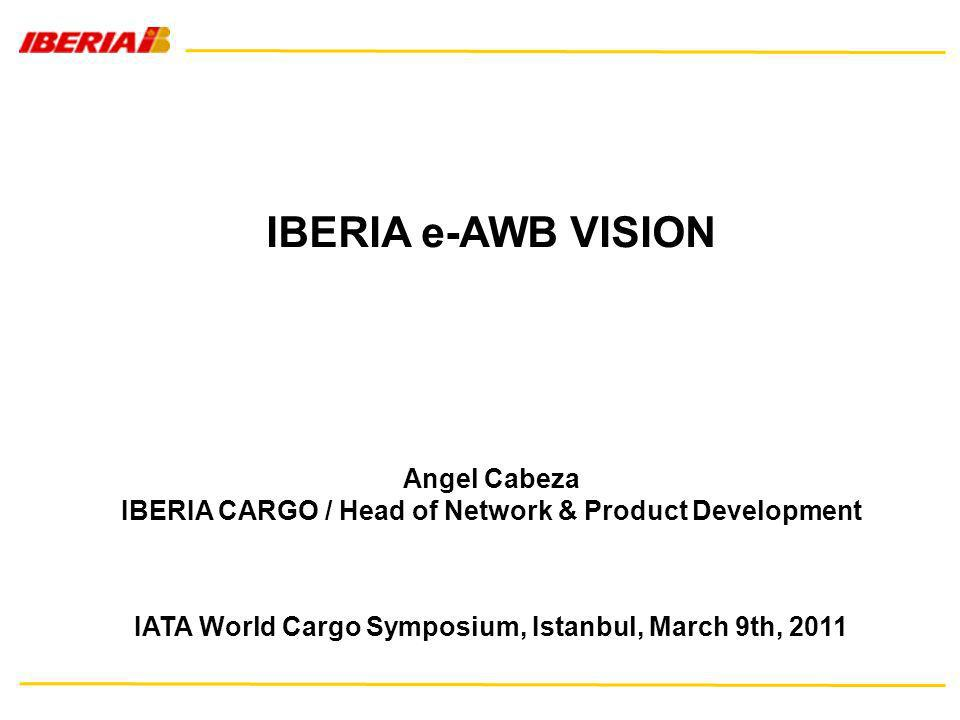 IBERIA CARGO / Head of Network & Product Development
