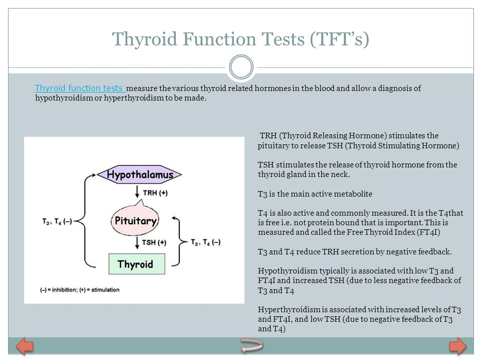 Thyroid Function Tests (TFT's)