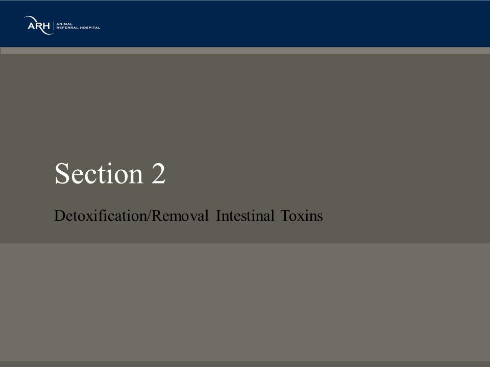 Section 2 Detoxification/Removal Intestinal Toxins