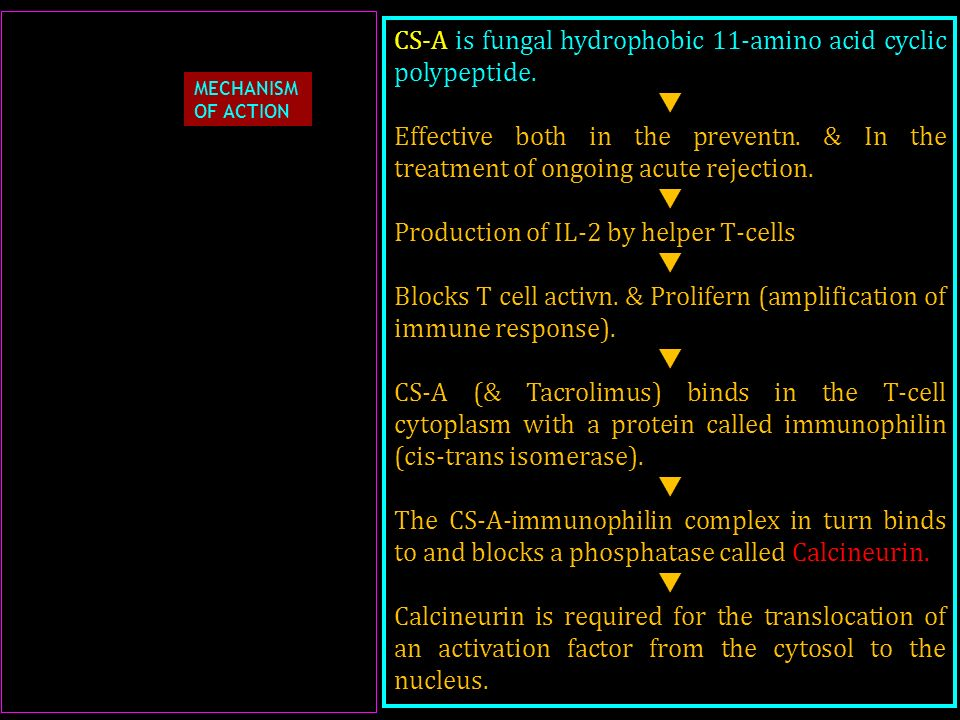 CS-A is fungal hydrophobic 11-amino acid cyclic polypeptide. 