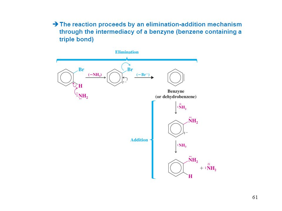 The reaction proceeds by an elimination-addition mechanism through the intermediacy of a benzyne (benzene containing a triple bond)