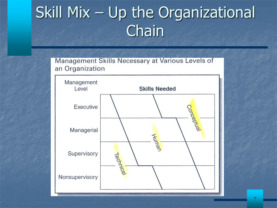 Skill Mix – Up the Organizational Chain