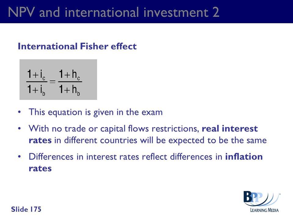 NPV and international investment 2