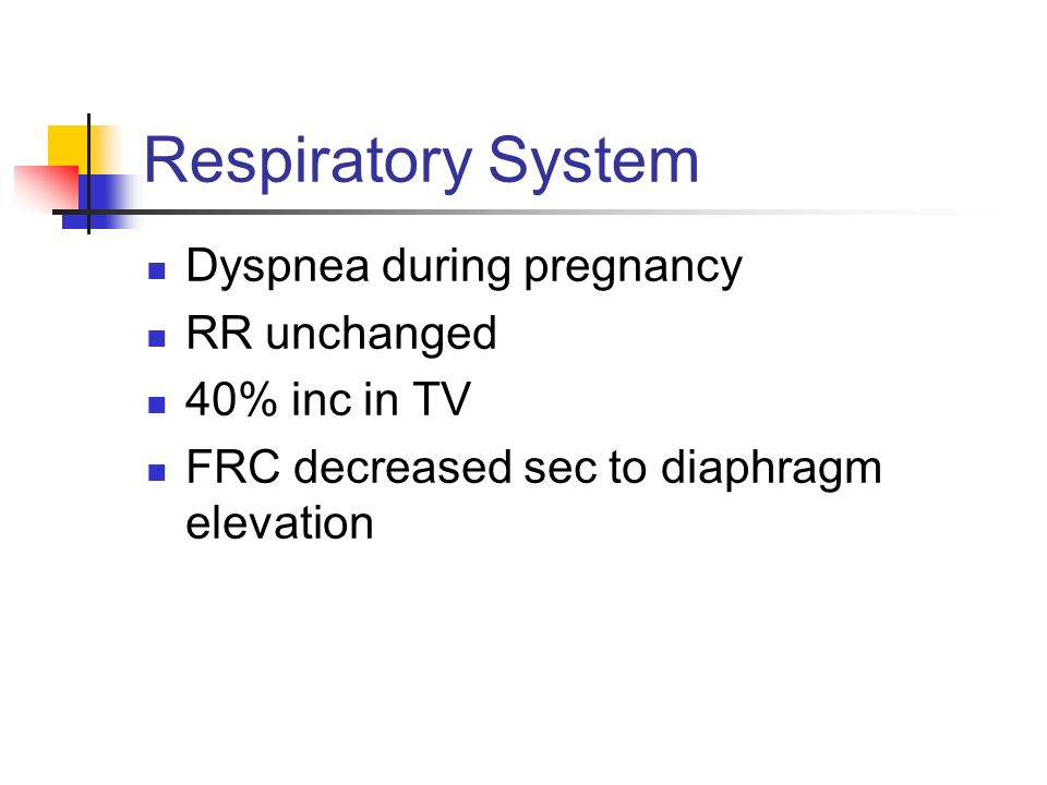 Respiratory System Dyspnea during pregnancy RR unchanged 40% inc in TV