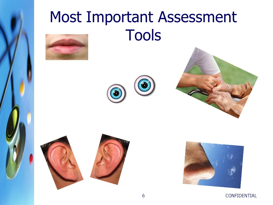 Most Important Assessment Tools