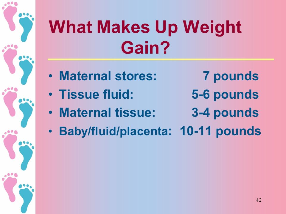 What Makes Up Weight Gain