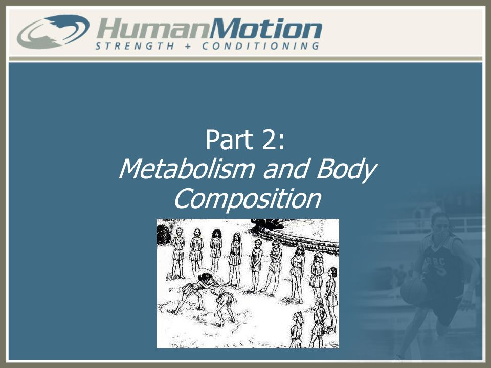 Part 2: Metabolism and Body Composition
