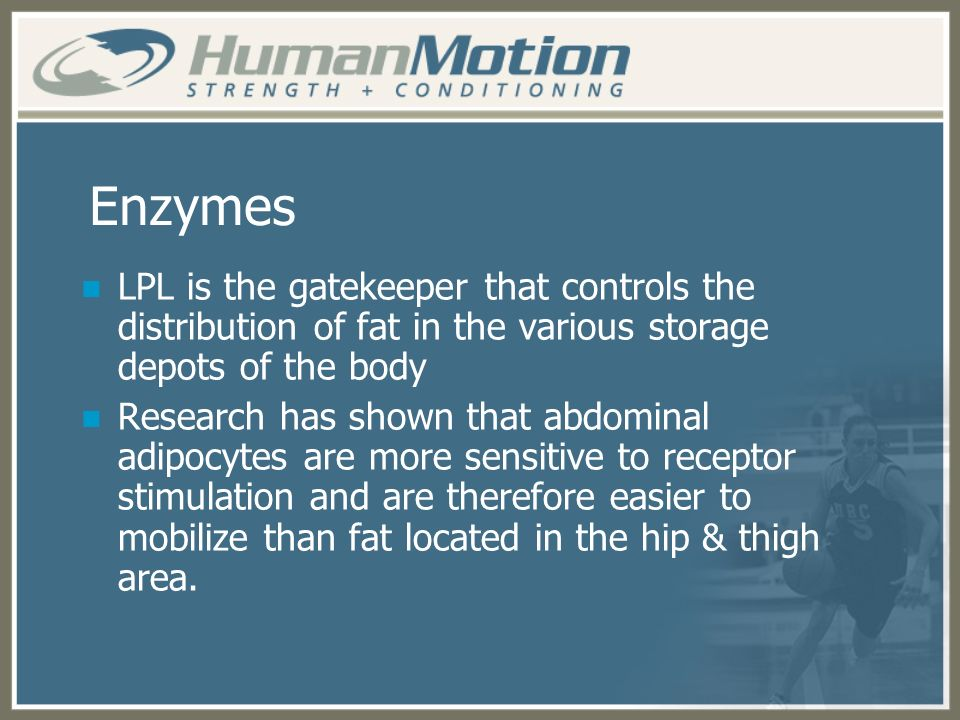 Enzymes LPL is the gatekeeper that controls the distribution of fat in the various storage depots of the body.