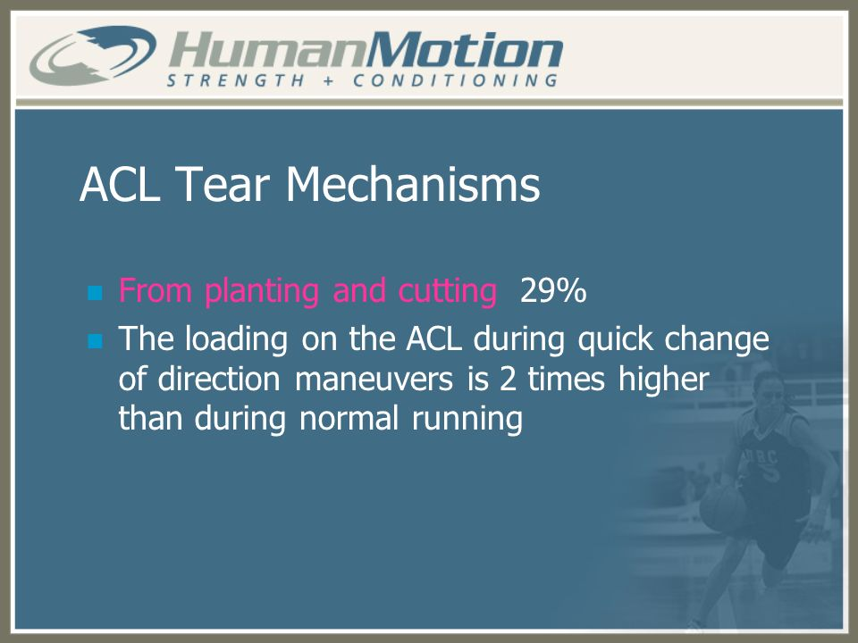 ACL Tear Mechanisms From planting and cutting 29%