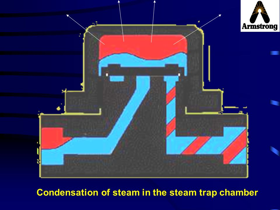 Condensation of steam in the steam trap chamber