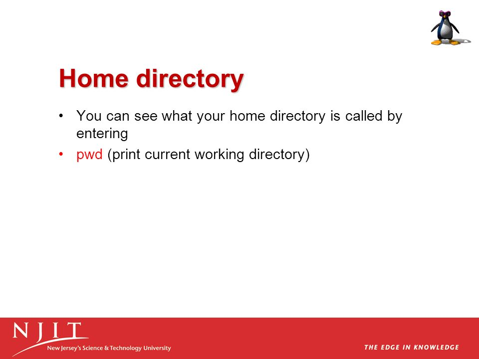 Home directory You can see what your home directory is called by entering.