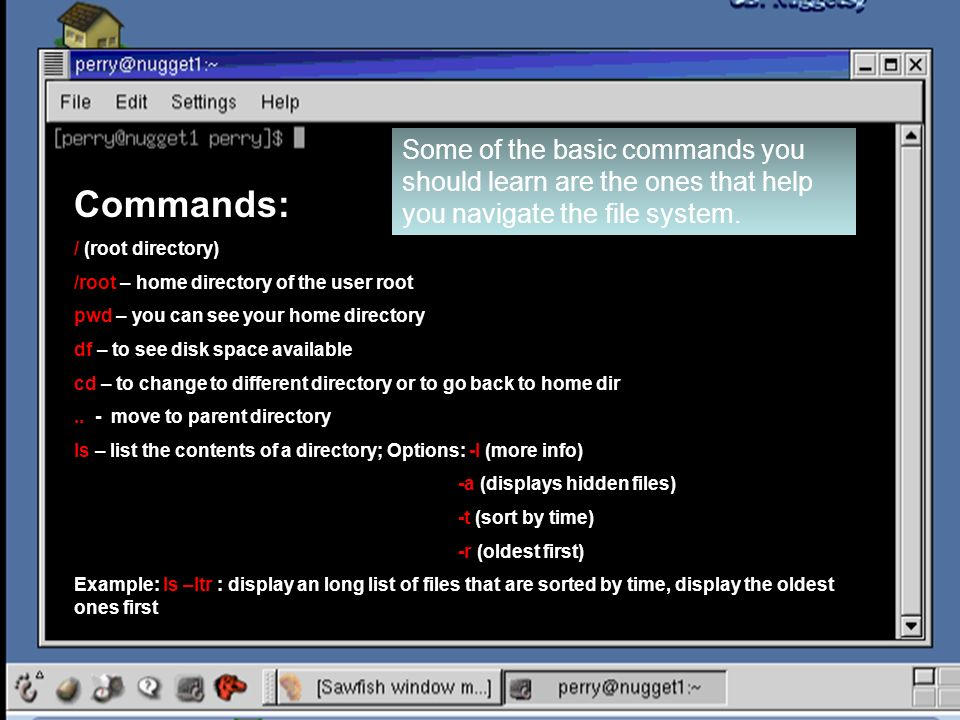Some of the basic commands you should learn are the ones that help you navigate the file system.