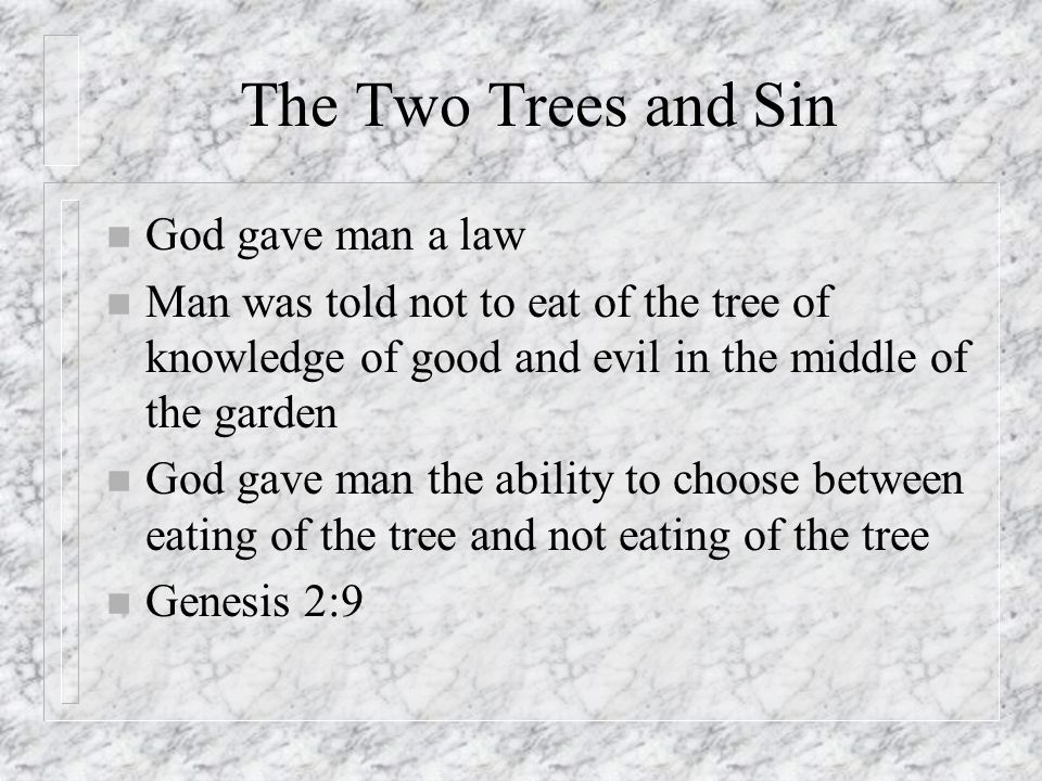 The Two Trees and Sin God gave man a law