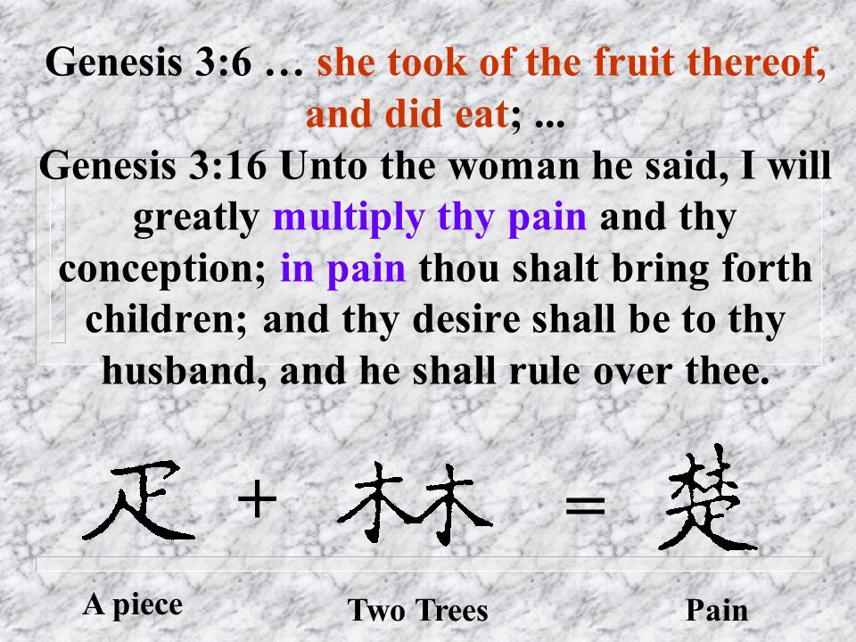 Genesis 3:6 … she took of the fruit thereof, and did eat;