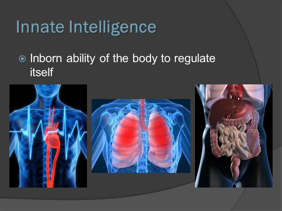 Innate Intelligence Inborn ability of the body to regulate itself
