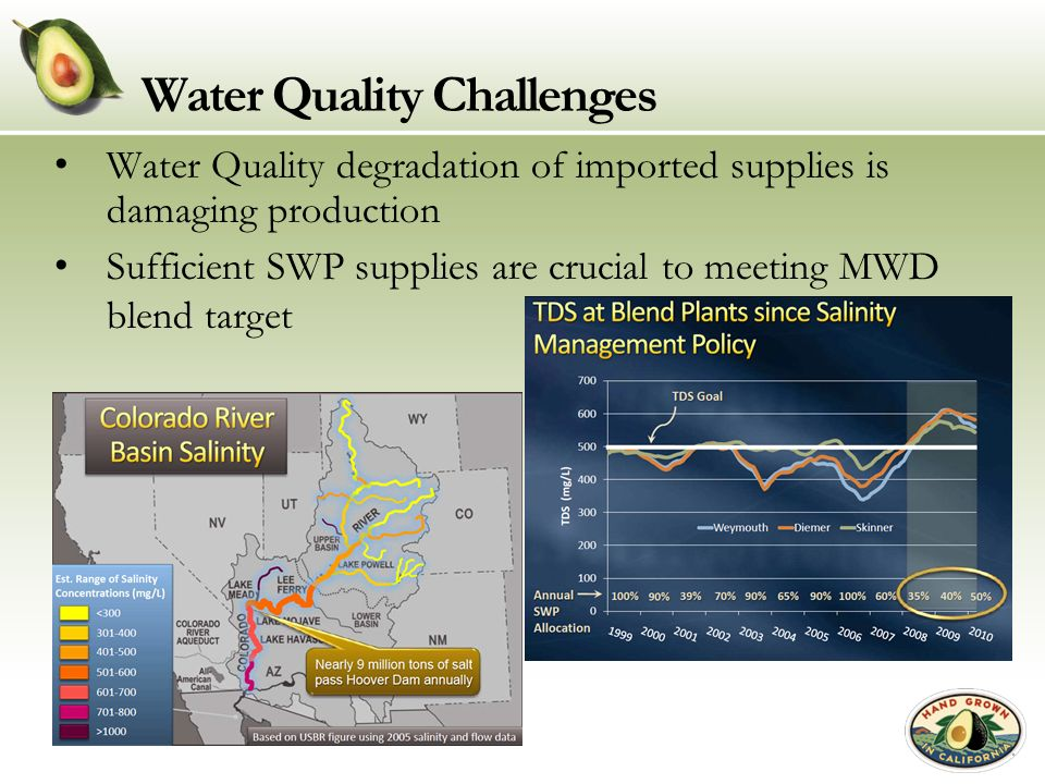 Water Quality Challenges