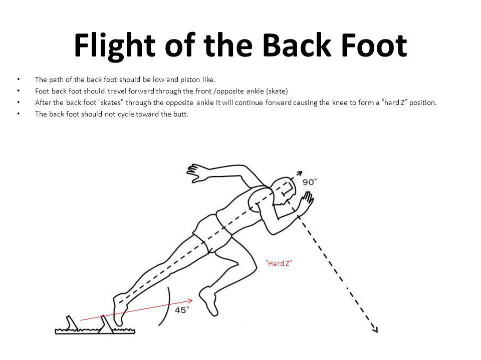 Flight of the Back Foot The path of the back foot should be low and piston like.