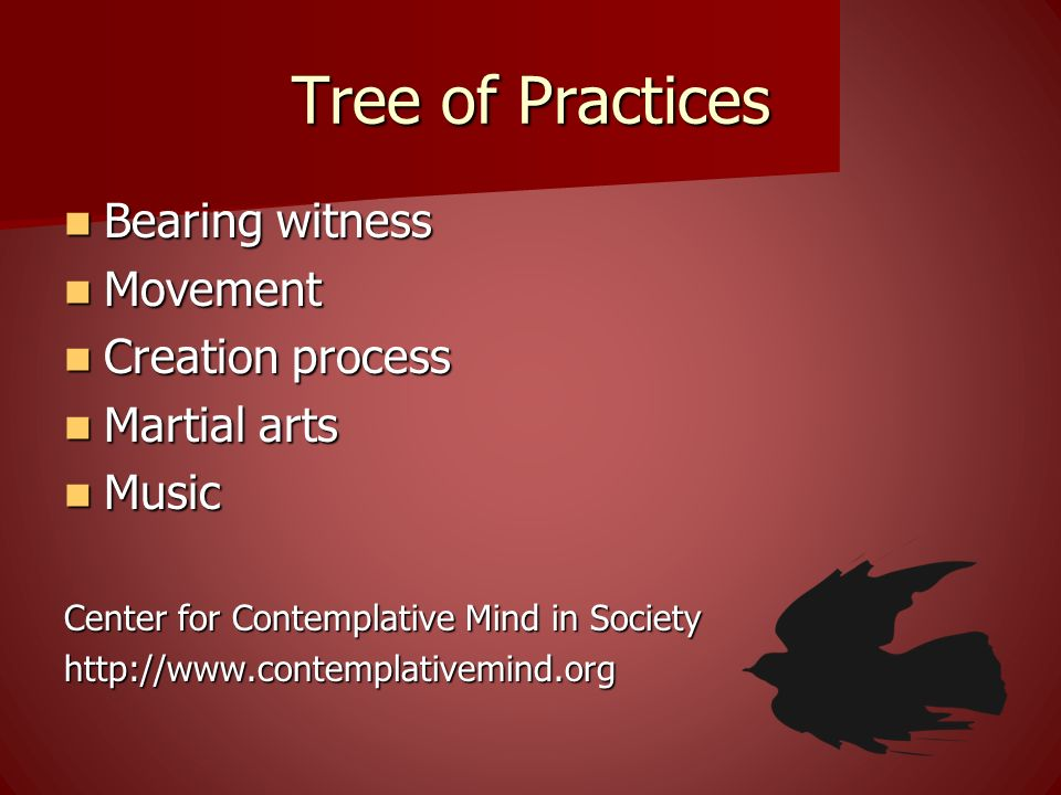 Tree of Practices Bearing witness Movement Creation process