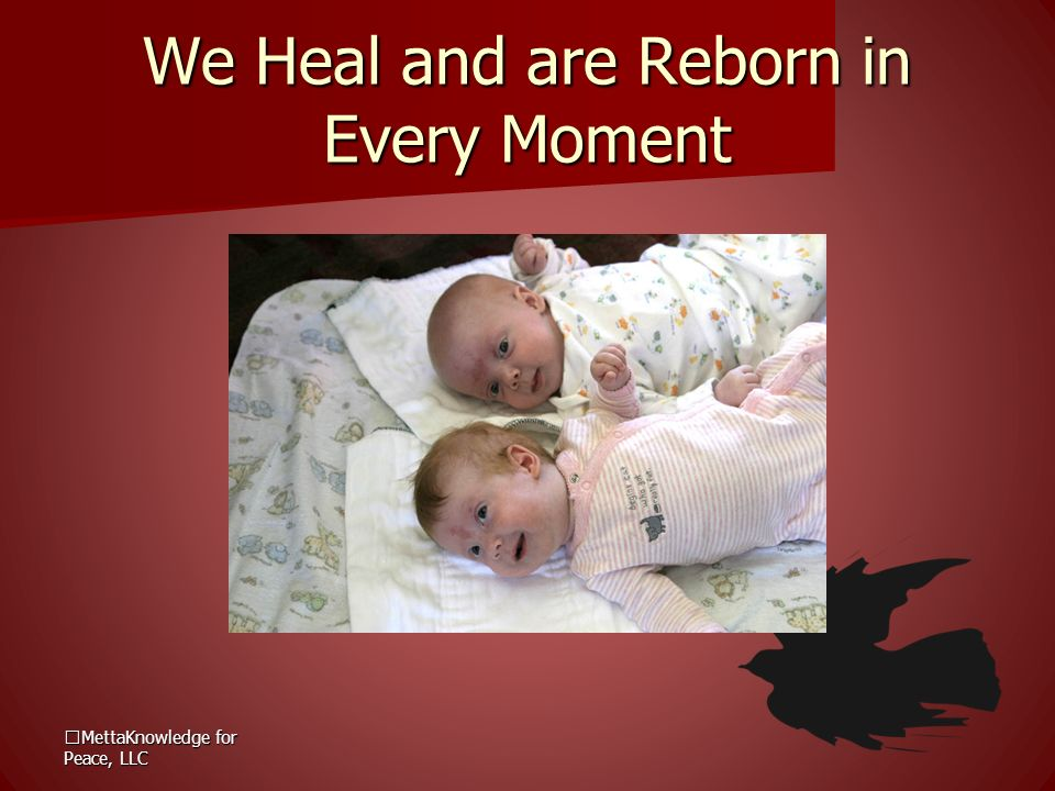 We Heal and are Reborn in Every Moment