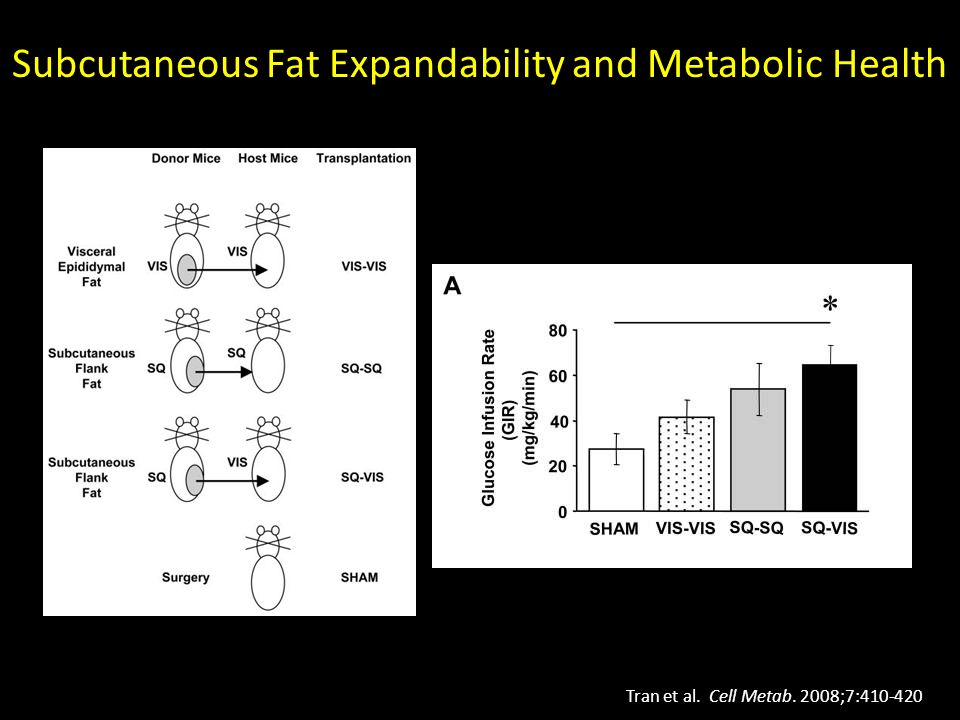 Subcutaneous Fat Expandability and Metabolic Health