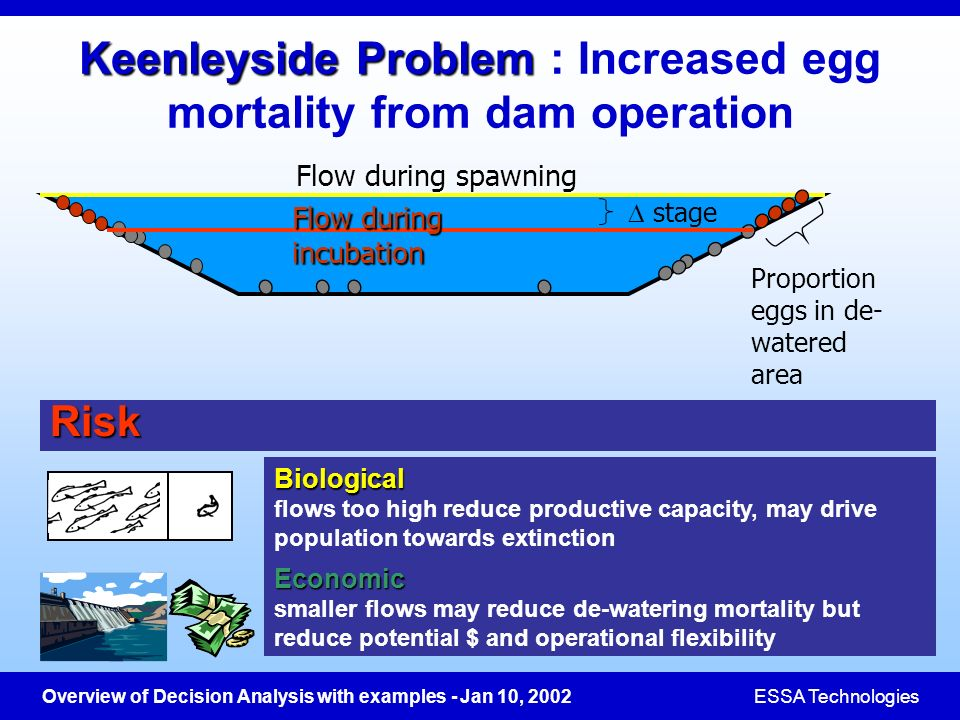 Keenleyside Problem : Increased egg mortality from dam operation