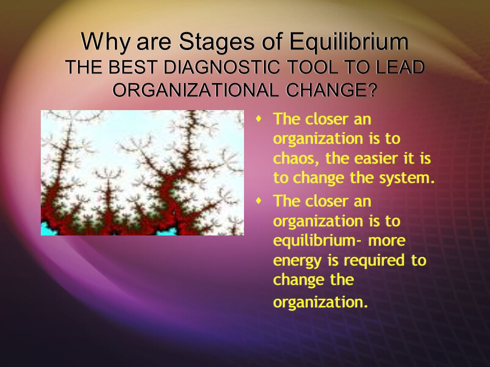 Why are Stages of Equilibrium THE BEST DIAGNOSTIC TOOL TO LEAD ORGANIZATIONAL CHANGE