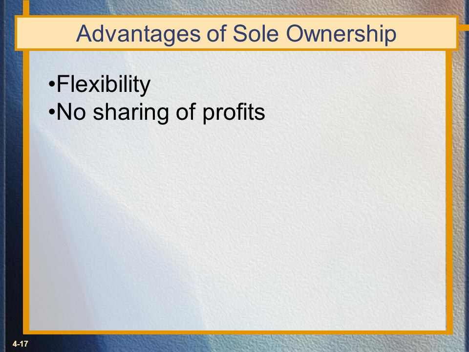 Advantages of Sole Ownership